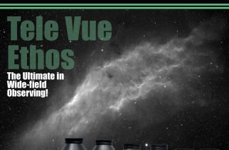 Volume 3, Issue 6